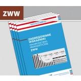 Zagregowane wskaźniki waloryzacyjno-prognostyczne ZWW (kwartalnik)